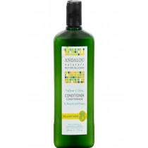 Andalou Naturals Brilliant Shine Conditioner Sunflower And Citrus - 11.5 Fl Oz