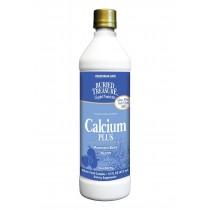 Buried Treasure Calcium Plus Blueberry - 16 Fl Oz